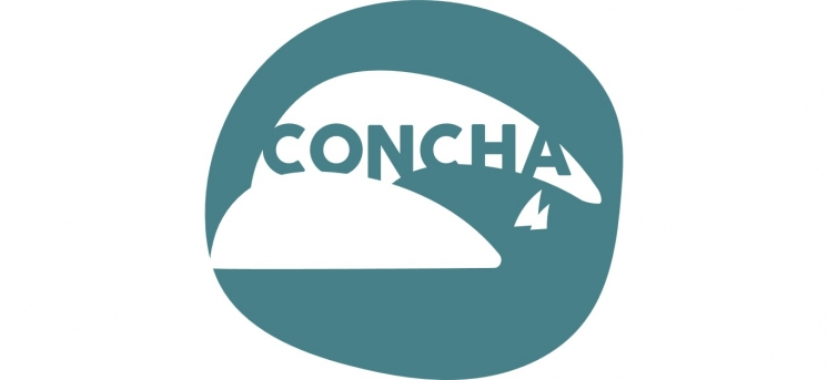 "CfP: 2nd CONCHA Workshop - ""Sea and Animals: History, Culture and Marine Conservation"" (until the 31st April 2019)"